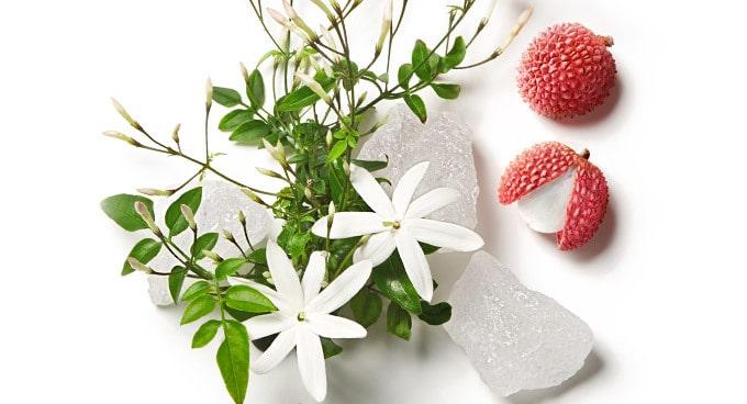 Sveže in energične note cvetov jasmina, očarljivo zbadljive note rožnatega ličija in čutne temeljne note belega lesa.