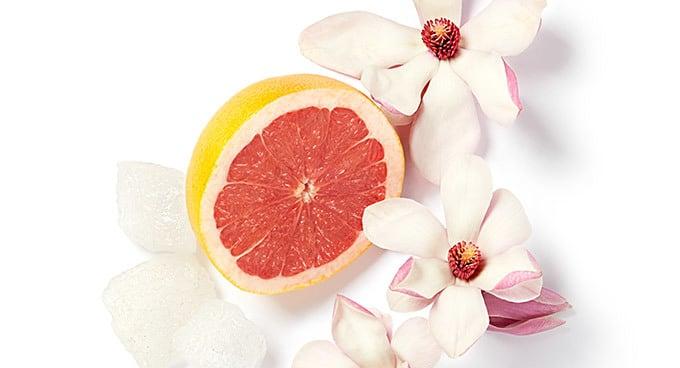 Dišava cvetoče magnolije, citrusa, belega mošusa, grenivke, limone, pomaračne, kalabrijske bergamotke in petitgraina